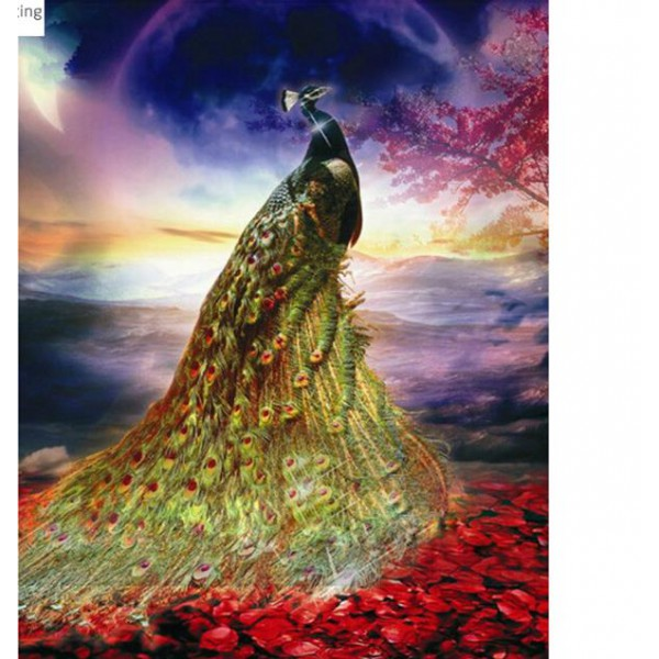 peacock diamond painting set full round drill picture bird wall art home deocr 25cmx30cm