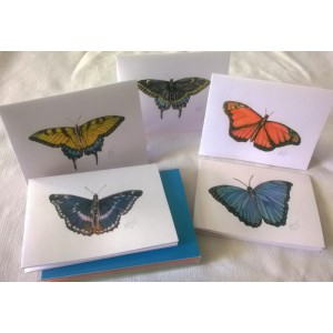 Butterflies by J. Renner Set of 5 Individually Handcolored/Hand Signed Blank Notecards w/Envelopes Boxed