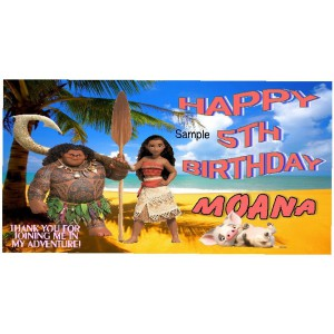 Qty 4 Good Boxes Moana Disney Birthday Personalized