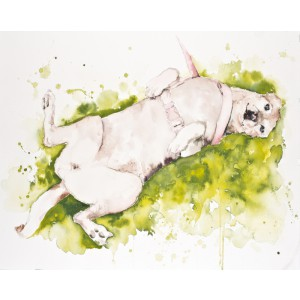 Pet Portrait in watercolor - 11 x 14 watercolor on paper by Jamie Hansen